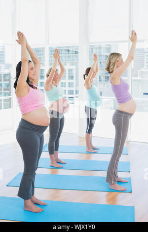 Smiling pregnant women in yoga class standing in tree pose in a fitness studio - Stock Photo