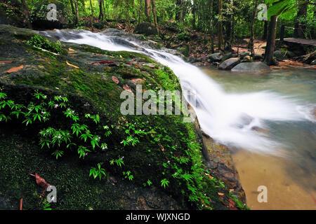 Waterfall in Thai National Park, Namtok Phile Waterfall, Namtok Phile National Park, Chanthaburi Province, Thailand - Stock Photo