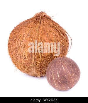 Two Ripe Coconuts isolated on White background - Stock Photo