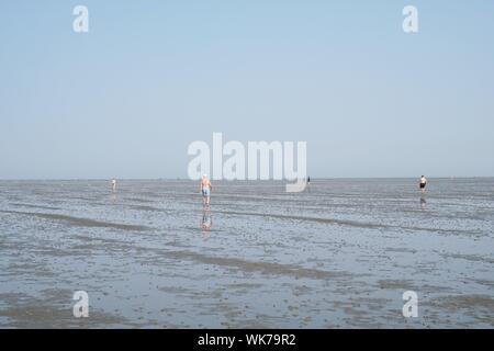Cuxhaven, Germany - August 26, 2019: North sea coast at ebb tide. Incidental people walking across mudflat tideland. - Stock Photo