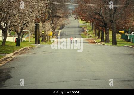 People Walking On Road Along Trees - Stock Photo