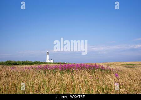 Samuel Wyatts 19th century lighthouse seen from the coastal path at Flamborough, Yorkshire, UK - Stock Photo
