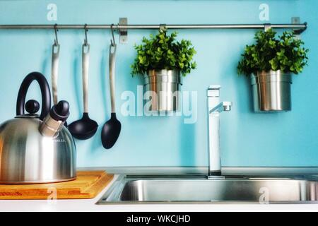 Potted Plants In Kitchen At Home - Stock Photo