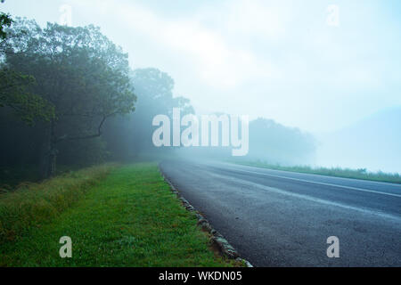 Road By Trees Against Sky - Stock Photo