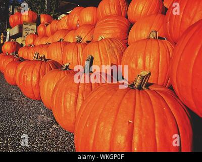 Stack Of Pumpkins For Sale At Market Stall - Stock Photo