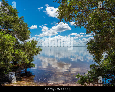 White cloud reflections in Sarasota Bay from Longboat Key in southwestern Florida