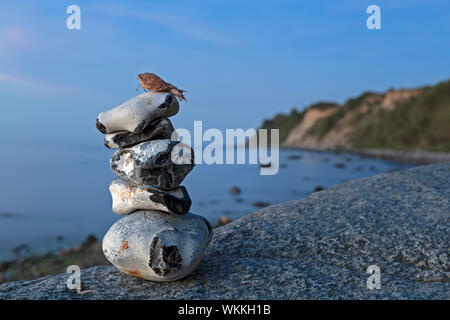 cairn beside the Baltic Sea near Steinbeck, Mecklenburg-West Pomerania, Germany - Stock Photo