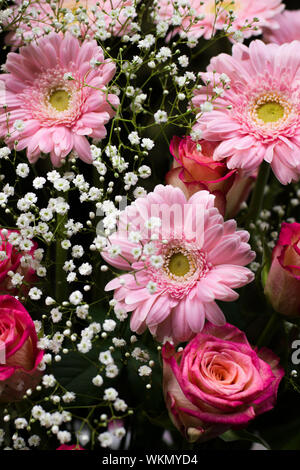 Roses, gerberas and gypsophila combined in a flower arrangement. 4 - Stock Photo