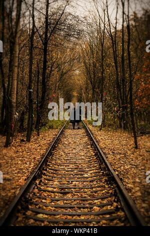 Couple Walking On Railroad Track Amidst Trees In Forest During Autumn - Stock Photo
