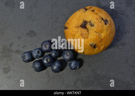 Choc chip muffin with blueberries - Stock Photo