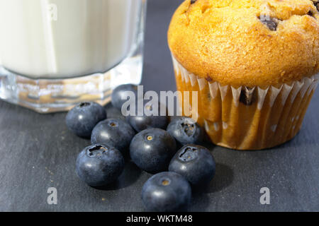 Muffin with blueberries and milk - Stock Photo