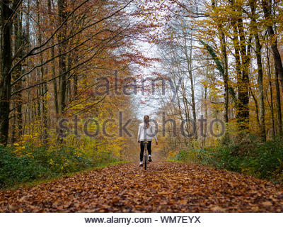 Rear View Of Teenage Girl Cycling In Forest - Stock Photo