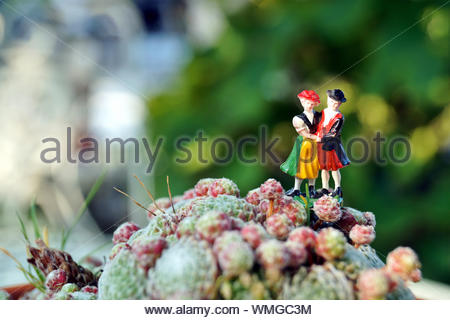 Miniature people. Bavarian man and woman in traditional dresses are standing on red and green cobweb houseleek. traditional Black Forrest costumes - Stock Photo