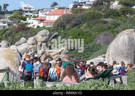 Crowd of tourists  on the boardwalk viewpoint at Boulders Beach viewing the African Penguin breeding colony, Simonstown, Cape Town, South Africa