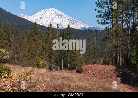 mt shasta volcano viewed from the vista point on interstate 5 highway near Castella California with forests and a meadow in the foreground - Stock Photo