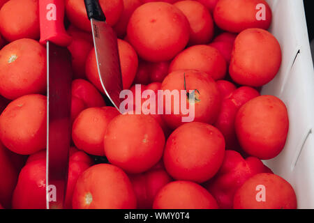 Fresh ripe tomatoes in basket.Close-up of delicious juicy fresh tomatoes collected in white plastic basket. Harvest concept. Red ripe tomatoes in - Stock Photo