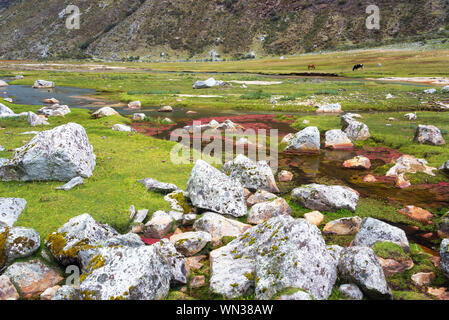 Stream Flowing Through Lush Green Valley At Cordillera Blanca In Andes Mountain - Stock Photo