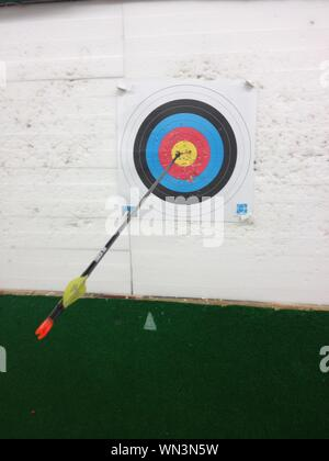 Archery Target With Arrow In Center - Stock Photo