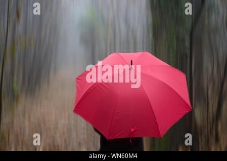 Close-up Of Person Under Red Umbrella Standing In Forest