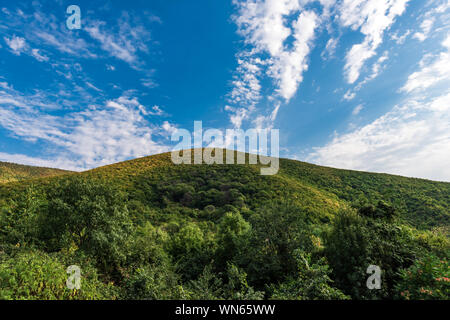 Mountain is covered with dense green forest and blue sky with clouds - Stock Photo