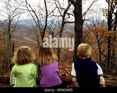 Rear View Of Siblings Looking At Mountains Through Autumn Bare Trees - Stock Photo
