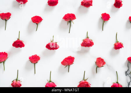 Floral pattern made of red roses flowers on white marble background. Flat lay style floral composition, top view mockup. Mother's day background. - Stock Photo