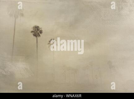 Digital Composite Image Of Palm Trees And Wall - Stock Photo
