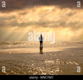Stading Alone on the Beach - Stock Photo