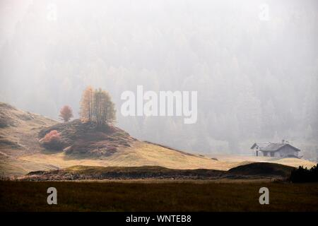 A beautiful shot of a house in a dry grassy field with a forested mountain in a fog in the background - Stock Photo