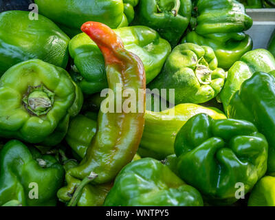 Beautiful green peppers with hint of red in market. - Stock Photo