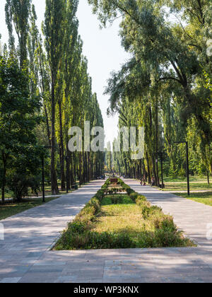 Kyiv, Ukraine - September 3, 2019: Alley of Martyr at Babi Yar memorial complex of the Holocaust in Kiev at 1941 year in Kyiv, Ukraine. - Stock Photo