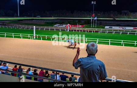 man watching horse race at racetrack - Stock Photo