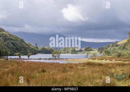 Llyn Cynwch lake on the popular Precipice Walk, Snowdonia National Park, North Wales, UK