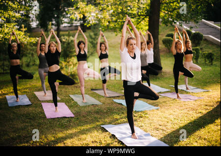 Group of young women are practicing yoga pose tree morning in park while sunrise - Stock Photo