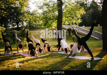 group of people doing yoga downward facing dog poses in