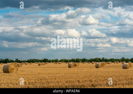Cheerful autumn scene with round bales of straw on a mown grain field in bright sunshine with impressive clouds in the skye - Stock Photo