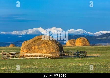 haystacks below the flint creek range near avon, montana - Stock Photo
