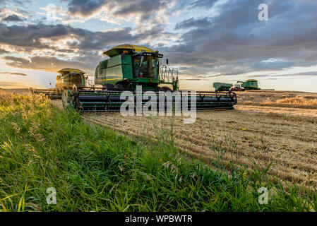 Swift Current, SK/Canada- Aug 25, 2019: Sunburst over combines and grain cart during harvest in Saskatchewan - Stock Photo