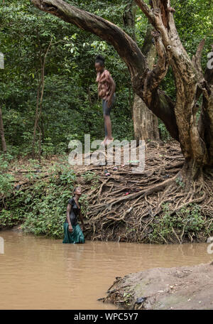 NECHISAR NATIONAL PARK, ETHIOPIA-OCTOBER 27, 2018: Unidentified girls jump from a tree into the water in the rain forest in Nechisar National Park in - Stock Photo
