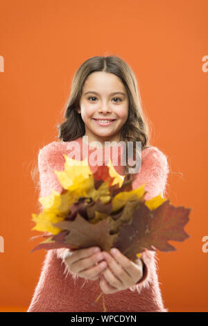 Collecting leaves. Cute happy smiling kid playing with leaves. Botany concept. Natural treasures. Color pigment. Changes in nature. Happy little girl with maple leaves. Small child hold autumn leaves. - Stock Photo