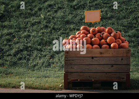 Pumpkins market with a pile of squashes in a wooden crate. Small orange colored pumpkins for sale. Seasonal products - Stock Photo