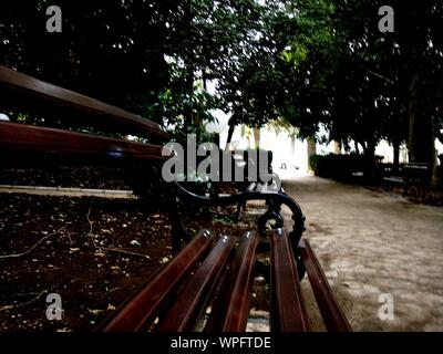 Wooden Bench By Footpath In Park - Stock Photo