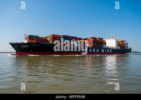 Stadersand, Germany - August 25, 2019: Container vessel YM Essence from Yang Ming shipping line on Elbe River at sunny hazy day. - Stock Photo