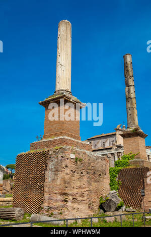 Honorary Columns at the Roman Forum in Rome - Stock Photo