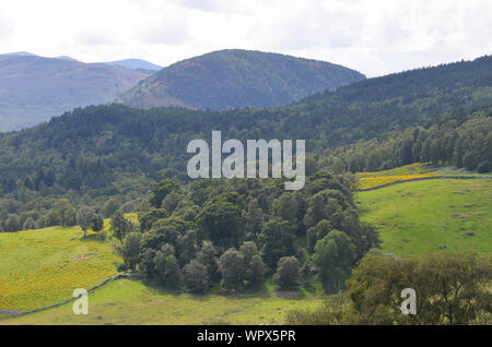 Sgor Buidhe circuit trek near Ballater, Cairngorms, Scotland - Stock Photo