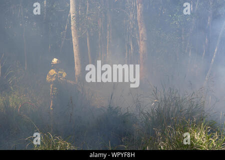 Fire fighters fighting a forest fire - Stock Photo