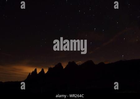 Silhouette Trees Against Sky At Night - Stock Photo
