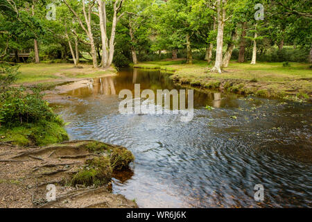 New Forest, Ober Water River at Puttles Bridge from Rhinefield Road, Hampshire, England, UK. - Stock Photo