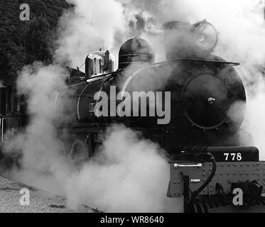 Smoke Emitting From Steam Train - Stock Photo