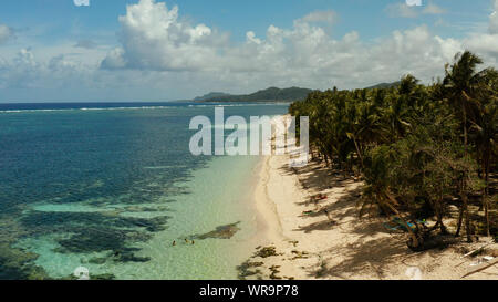Tropical sandy beach with palm trees and blue water, aerial view. Summer and travel vacation concept. Siargao, Philippines.